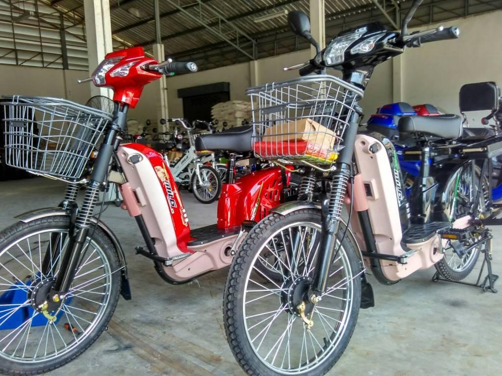FEBUS จักรยานไฟฟ้า 450 วัตต์ บรรทุก คันใหญ่ ล้อใหญ่ 22 นิ้ว 35 กม./ชม. 35 กม./ชาร์จ